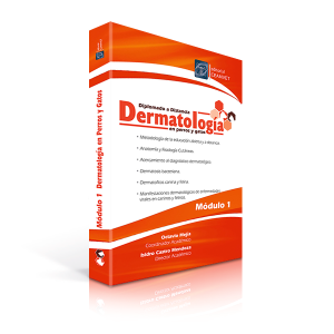 Libro_Diplomado_Dermatología