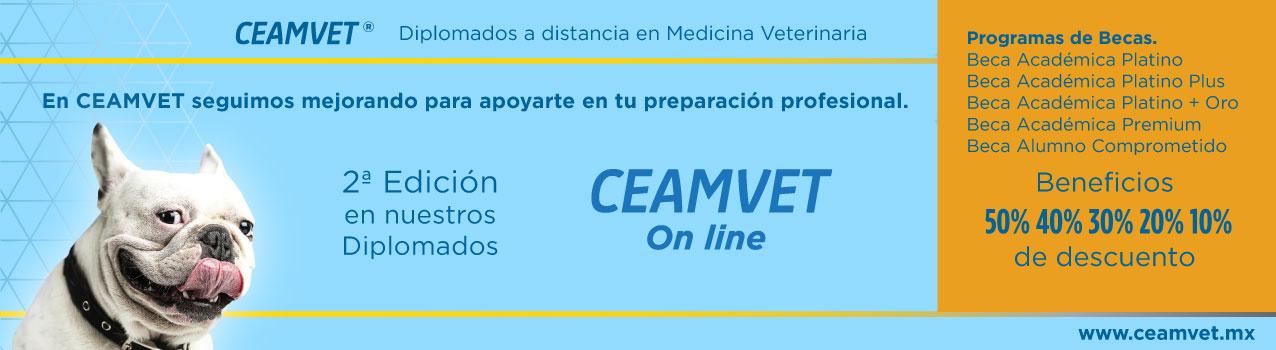 Ceamvet_Banner